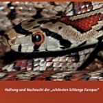 leopardnatter_cover_TK2015-klein